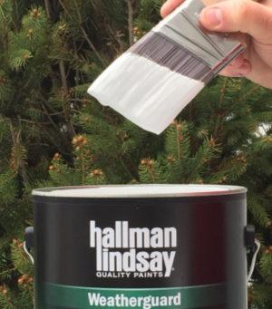 hallman paint